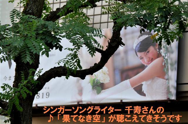ホテルニューオータニ高岡 ウェディングストーリー パネル (2)