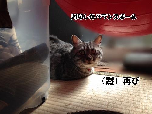11_201404201454489b5.jpg