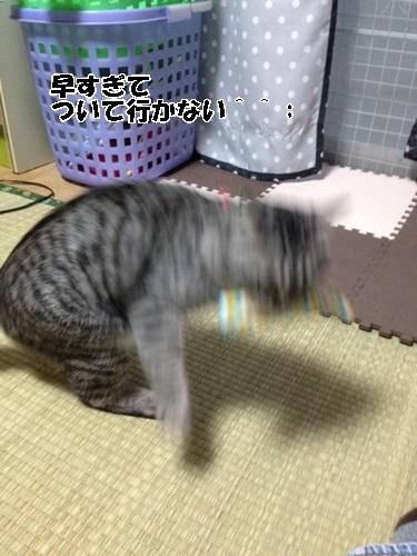 14_201403301846459f6.jpg