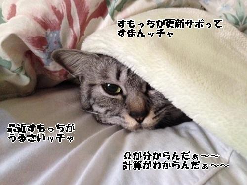 63_2014041518193702b.jpg