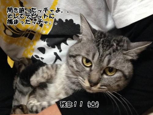 IMG_4103.jpg