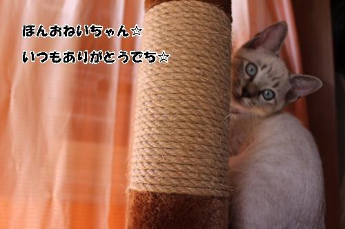 IMG_4840.jpg