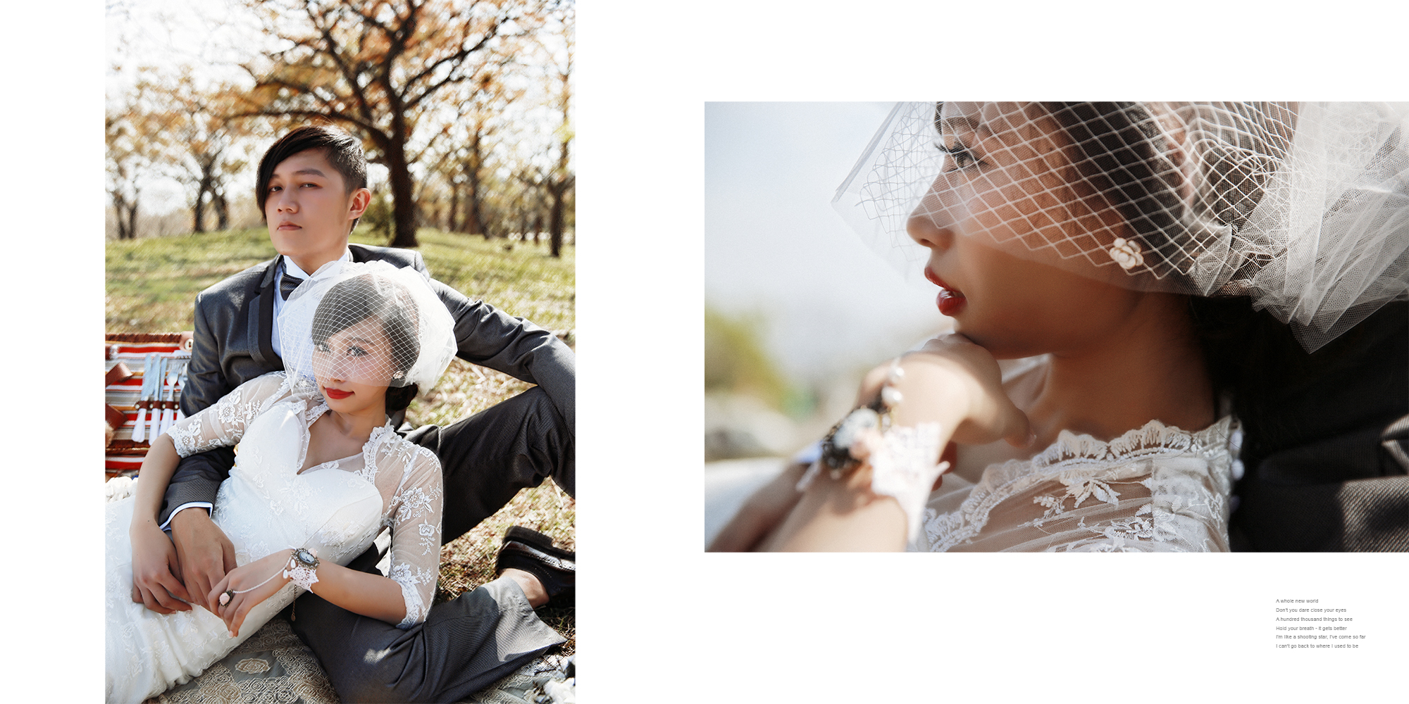 10.貴族下午茶野餐風格婚紗