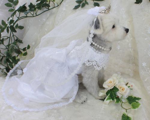 花嫁さん5