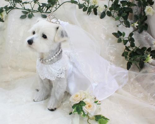 花嫁さん4