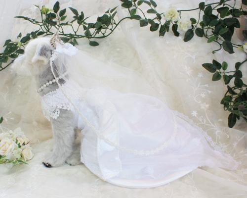 花嫁さん7