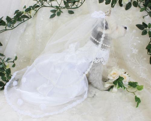 花嫁さん8