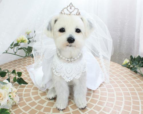 修正花嫁1