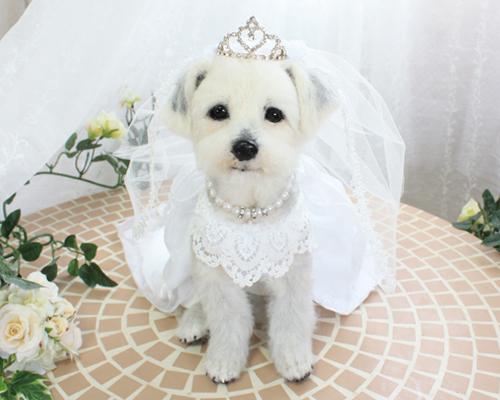 修正花嫁2