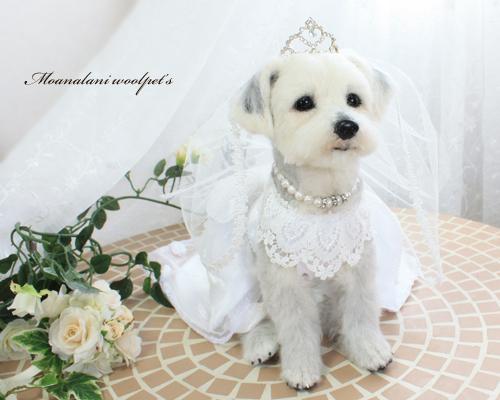 修正花嫁3