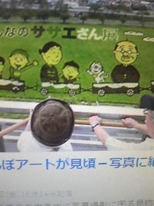 140802_サザエさん田んぼアート