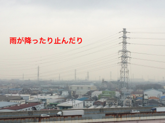 IMG_0580_Fotor.jpg