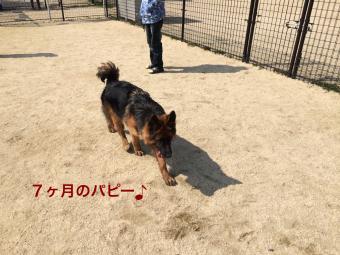 IMG_0628_Fotor.jpg