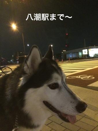 IMG_0681_Fotor.jpg
