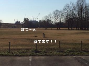 IMG_0694_Fotor.jpg
