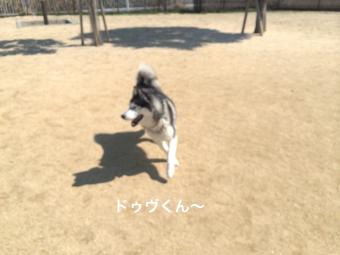 IMG_0699_Fotor.jpg