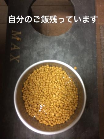 IMG_0702_Fotor.jpg