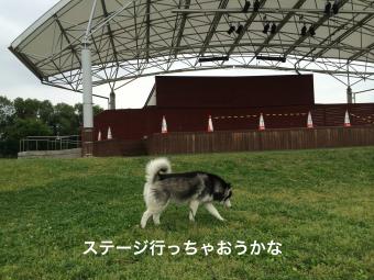 IMG_0846_Fotor.jpg