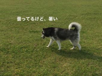 IMG_0912_Fotor.jpg