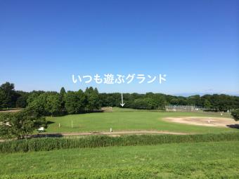 IMG_0988_Fotor.jpg