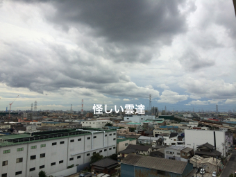 IMG_1197_Fotor.jpg