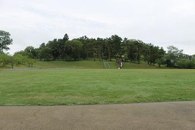 円山公園 2014-08-06 018
