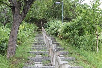 円山公園 2014-08-06 051