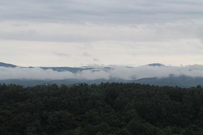 円山公園 2014-08-06 061