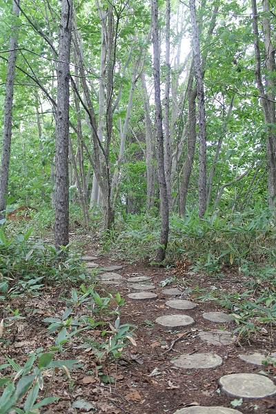 西崎山環状列石 2014-08-12 030