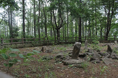 西崎山環状列石 2014-08-12 028