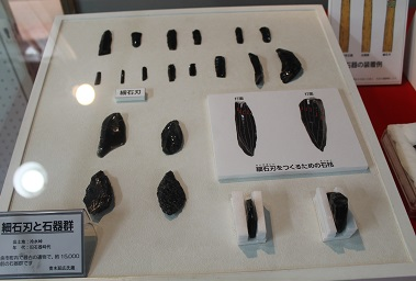 水産博物館 特別展 2014-08-30 011