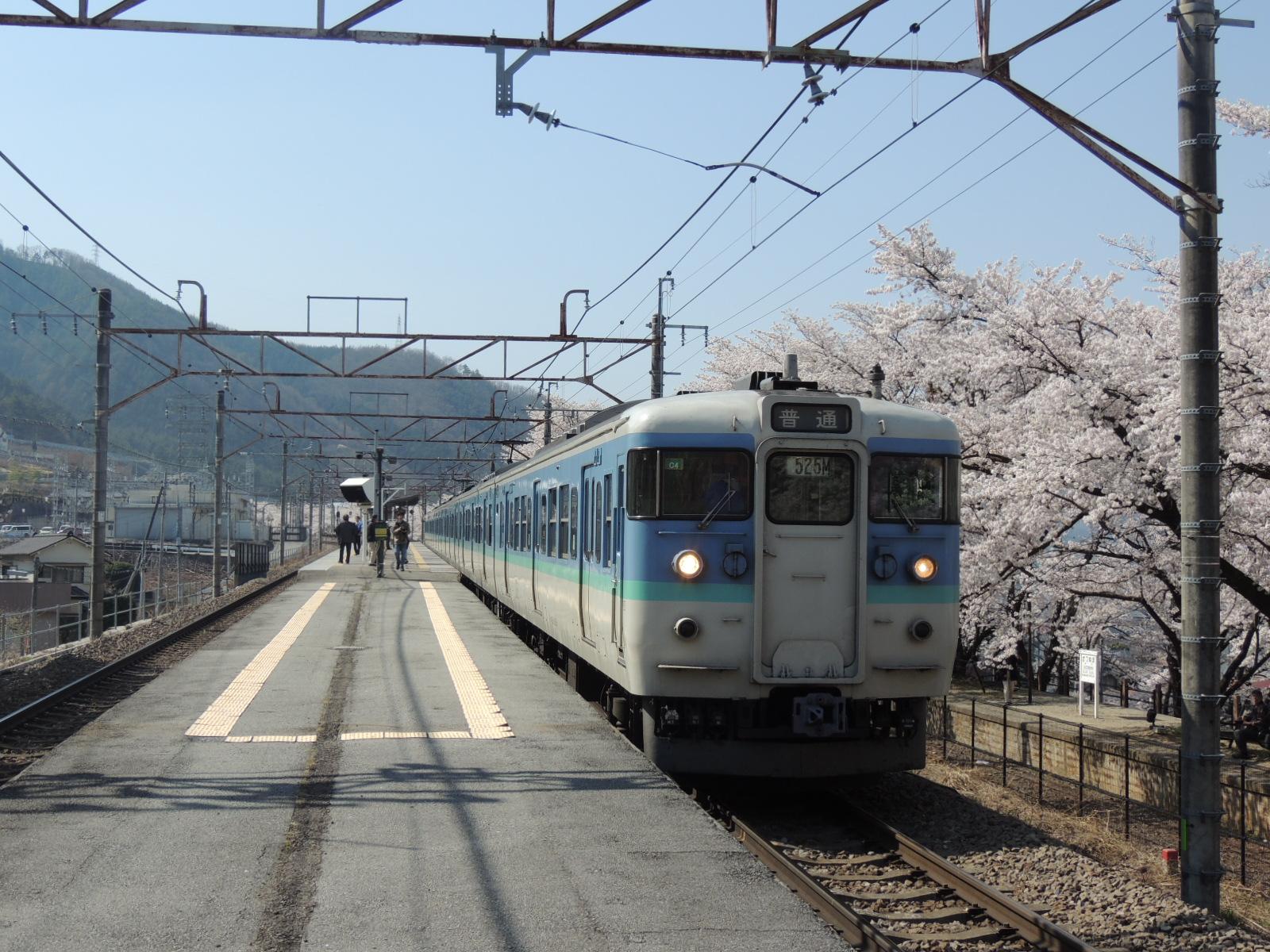 115系C4編成信州色×桜(勝沼ぶどう郷) (3)