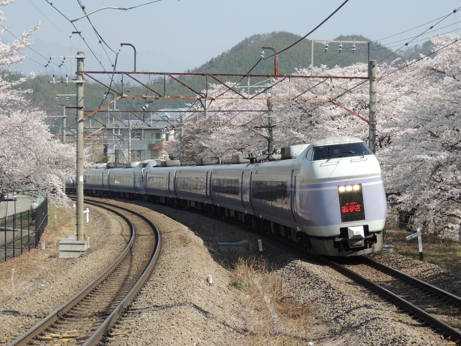 E351系×桜(勝沼ぶどう郷) (2)