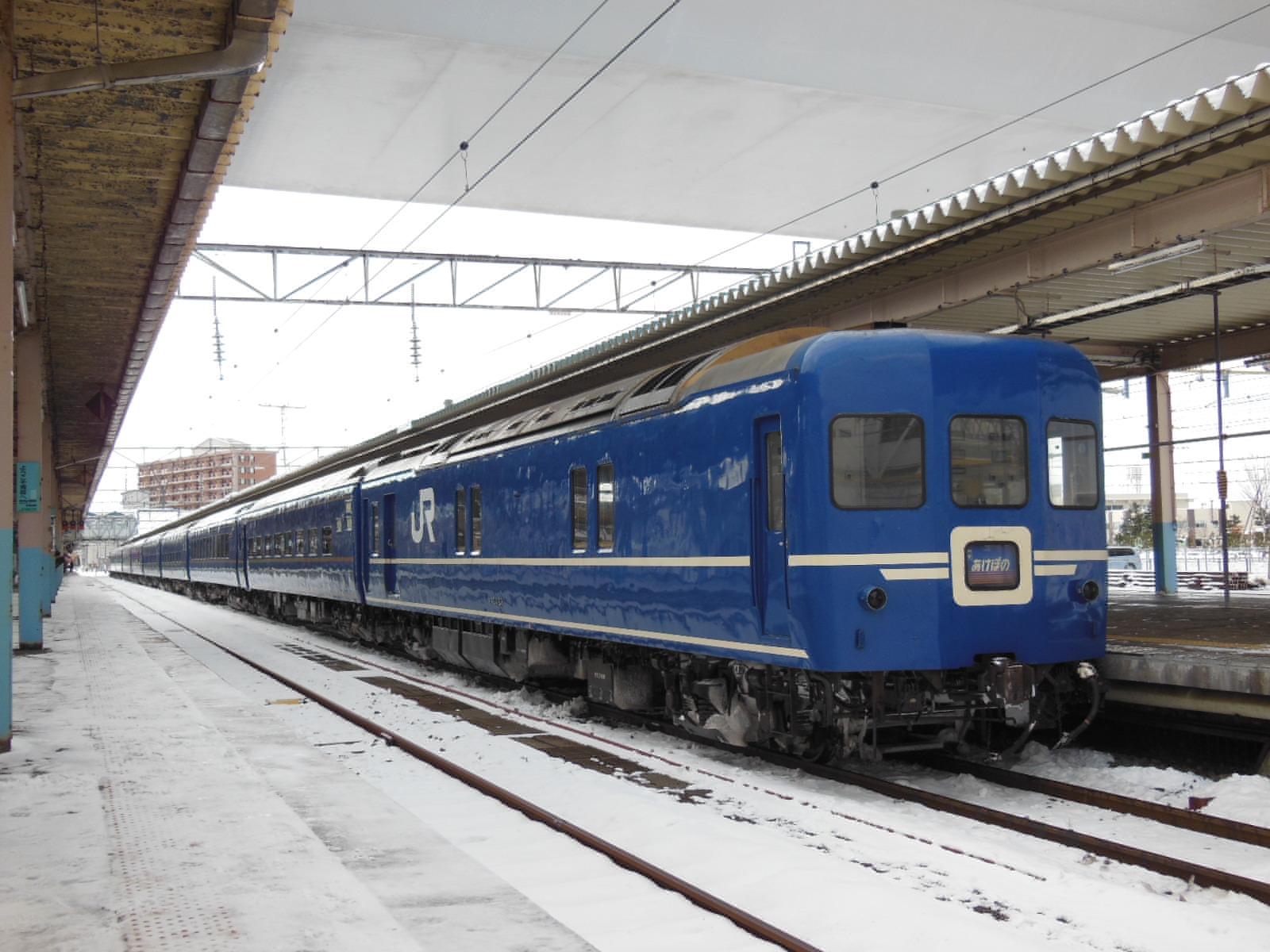 DSCN6595.jpg