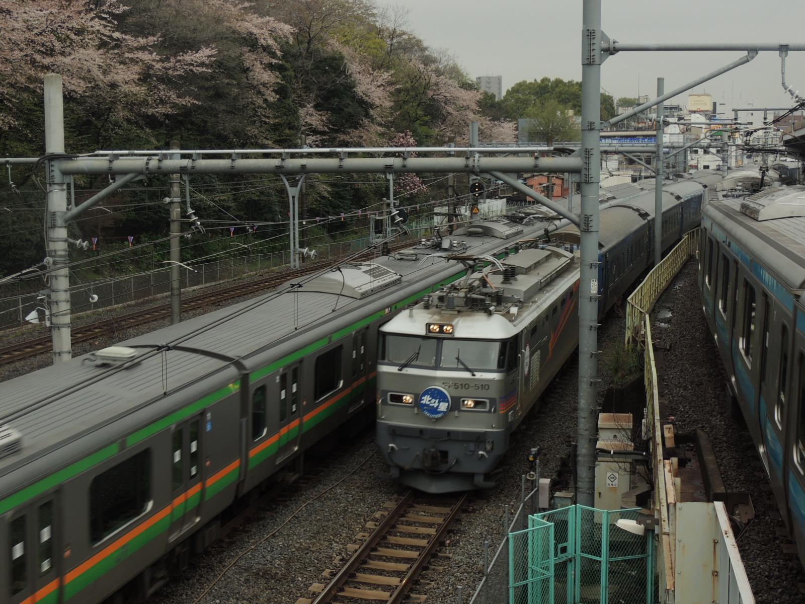 DSCN7442.jpg