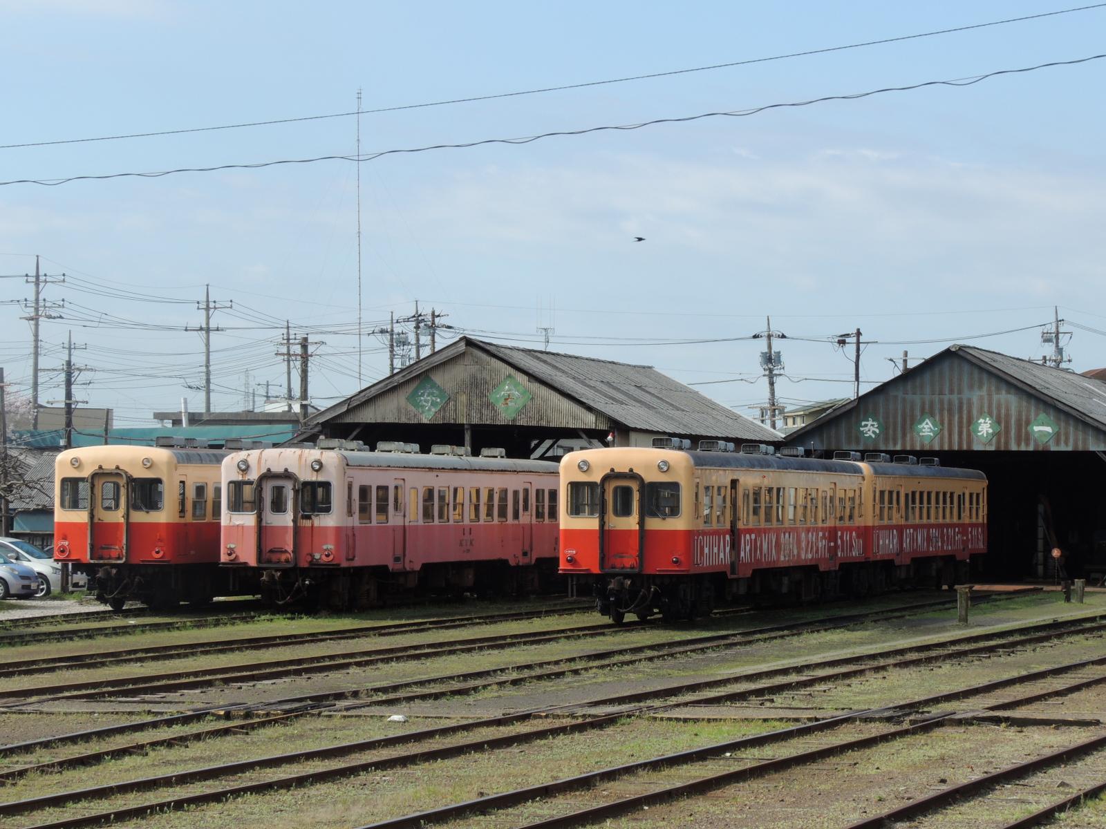 DSCN7479.jpg