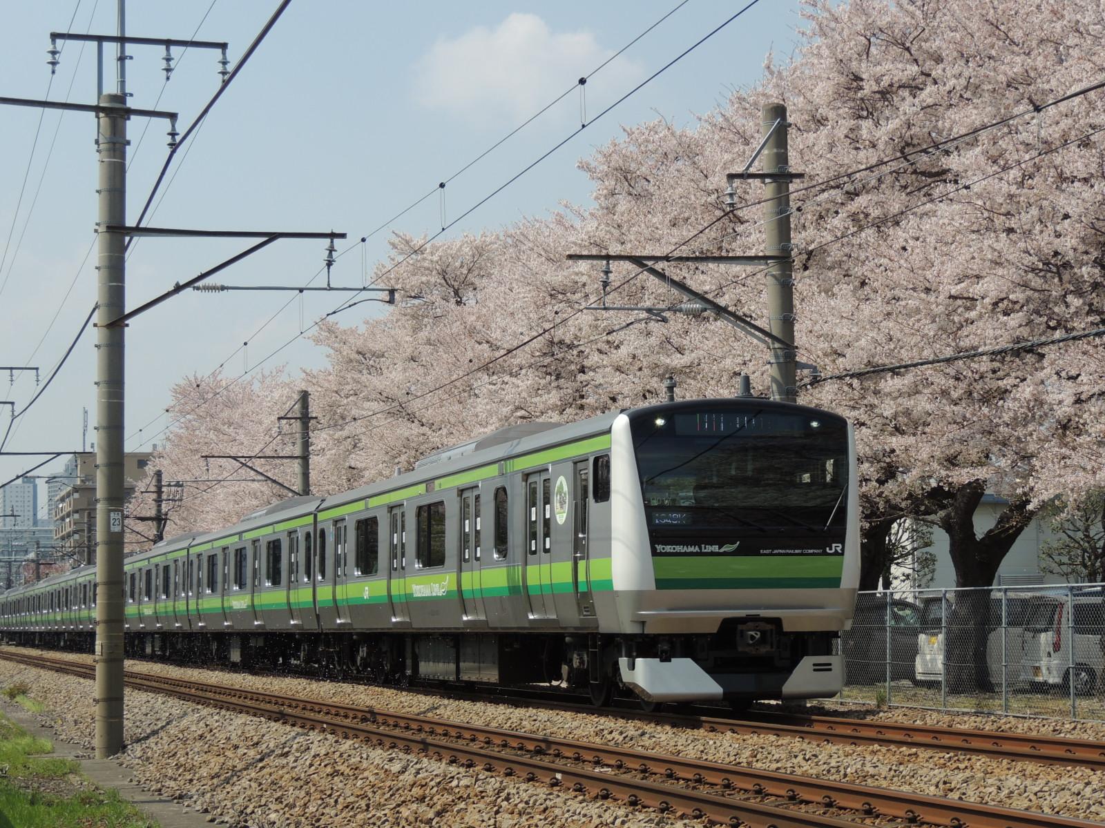 DSCN7603.jpg