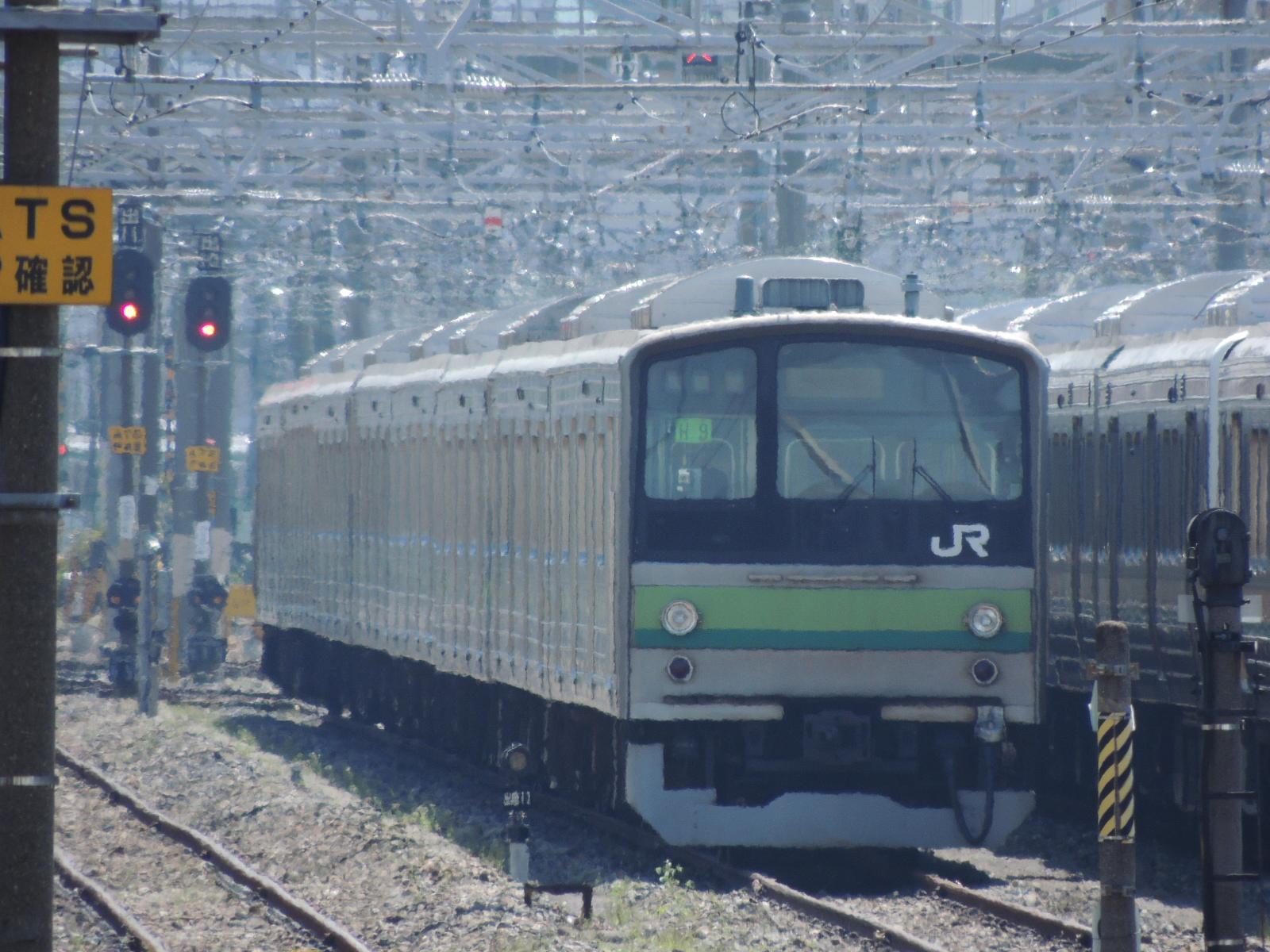 DSCN7626.jpg