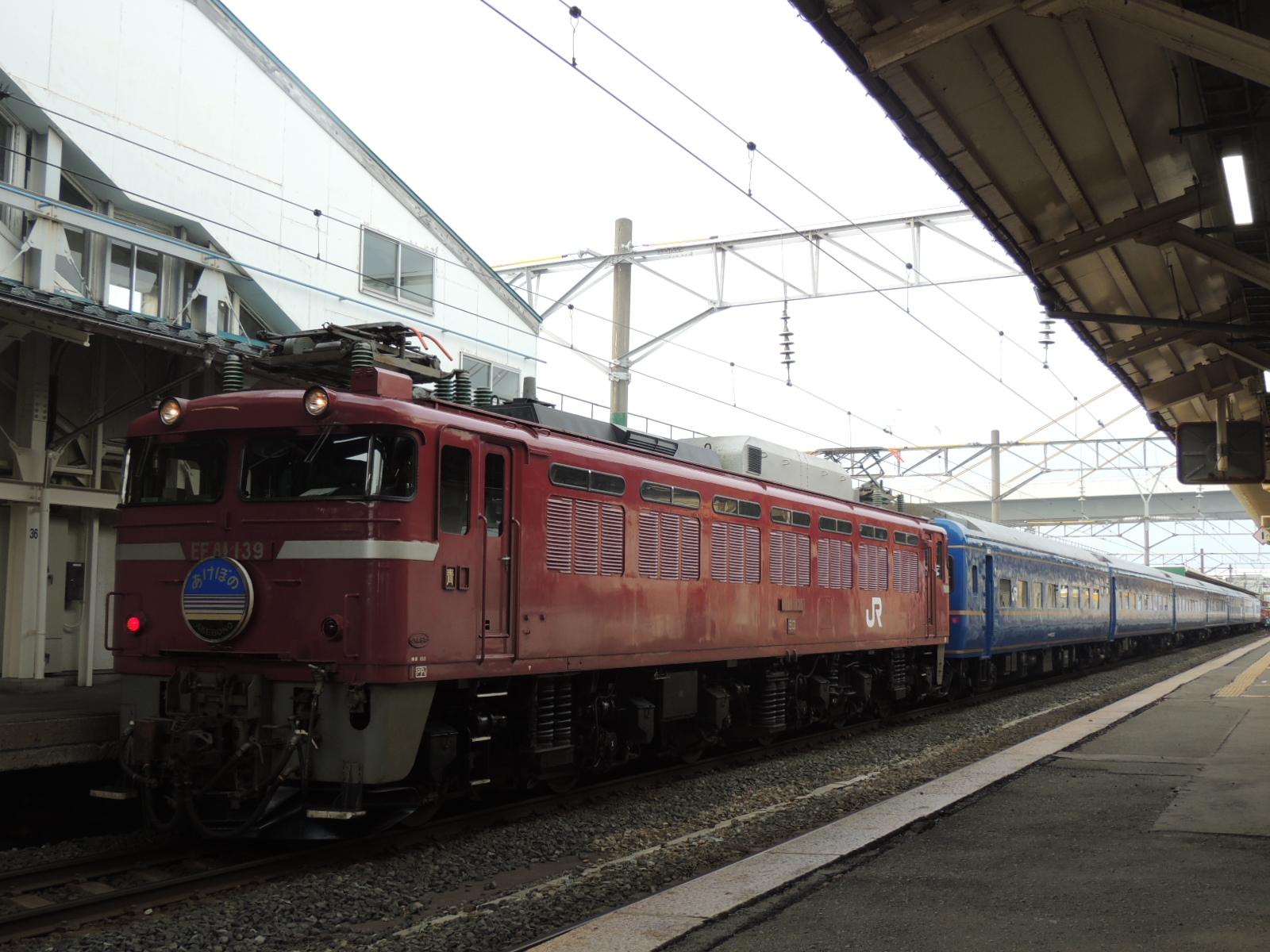 DSCN7991.jpg