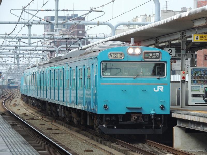 DSCN8318.jpg