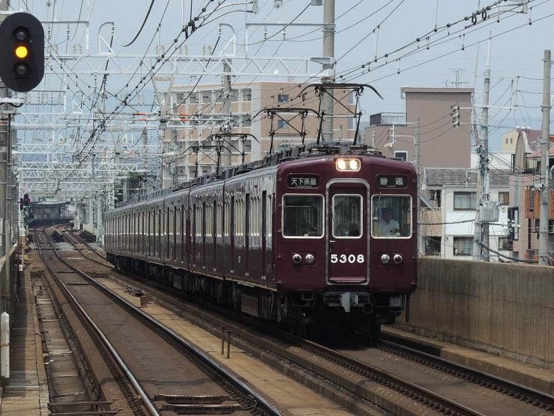 DSCN8410.jpg