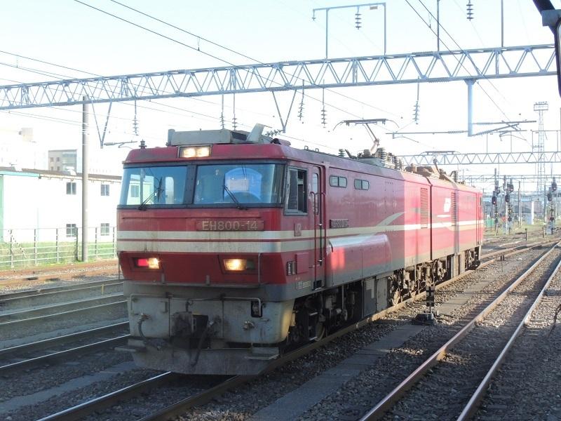 DSCN8605.jpg