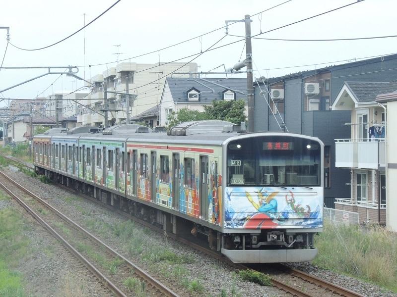 DSCN8611.jpg