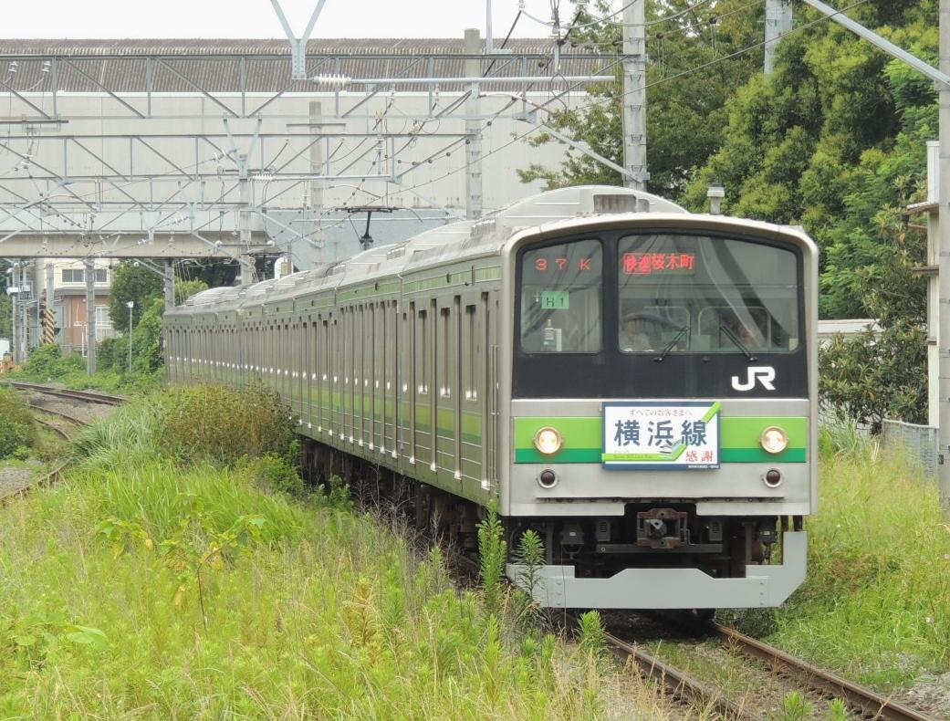 DSCN9377.jpg