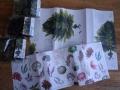 食べる海藻図鑑2
