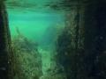 鷹巣海水浴場 137