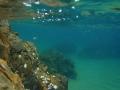 鷹巣海水浴場 127