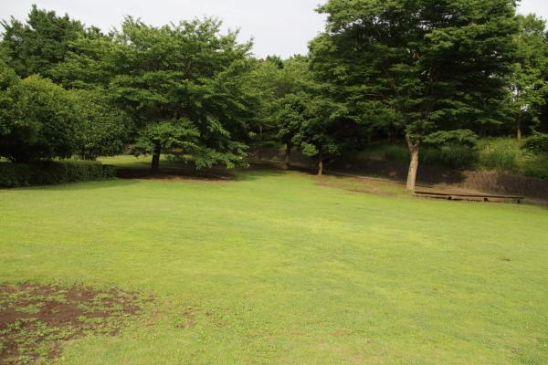 IMG_4093芝生のふるさと公園芝生のふるさと公園