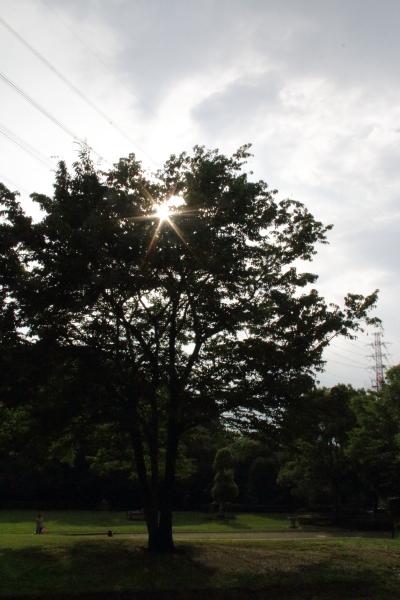 IMG_4097芝生のふるさと公園芝生のふるさと公園