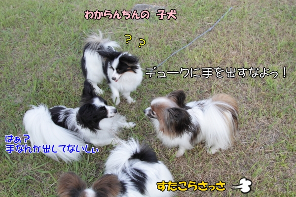 IMG_0152千倉千倉